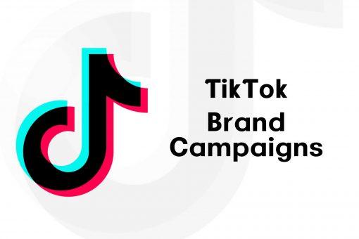 TikTok Brand Campaigns